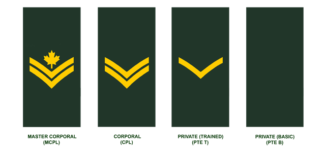 CanadaInfo: Security & Defence: Canadian Armed Forces